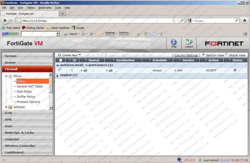 FG-Vmware-Install_6
